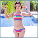 Изготовленный на заказ цвет радуги нажимает вверх Swimsuit Бикини