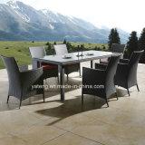 Glassicデザイン一定のレストランを食事する屋外のPE藤の家具の庭は椅子および表(YT100)と4-10personを使用してセットした
