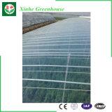 Multi estufa do vegetal da película plástica da agricultura da extensão