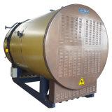 Caldeira de vapor de condensação horizontal Wns12 do rolamento do petróleo da indústria (gás)