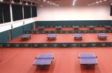 De Sporten die van pvc van de Verkoop van China Facroty voor Pingpong met 10mm vloeren