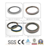 Heißes Sale MERCEDES-BENZ Kamaz Oil Seal Sealing Elements von 0403430 D0277 740007 0975