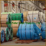 ASTM 304 316L Stainless Steel Sheet Coil in Large Stock