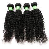 bouclé crépu de tressage d'Afro de cheveu de la pente 7A d'Afro crépu de cheveu