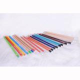 Dessin de haute qualité crayons, noir/argent Stripe crayons HB avec une trempette fin