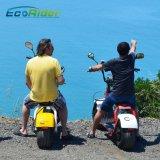 Scooter électrique de Citycoco d'Ecorider de roue chaude de la CEE 1200W deux avec des miroirs et des lumières