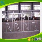 農場のための牛農場の牛装置によって使用されるHeadlocks