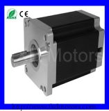 Stepping bifase Motors di 110series