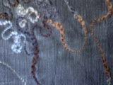 [هيكردوروي] ([سبندإكس] شاذّة [فروستد] تطريز) [] ينتج هجين ذرة بذرة