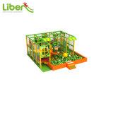 球のプールおよびスライドが付いている子供の大きく創造的な屋内運動場