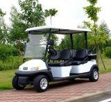 Carros eléctricos para turistas