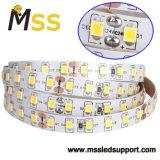 Fita LED de decoração leve 24V DC de baixa tensão 12V Fita LED flexível 24V