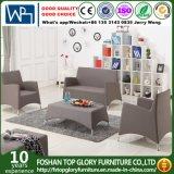 Sofá moderno del nuevo del diseño del sofá sofá de aluminio de la tela (TG-6103)