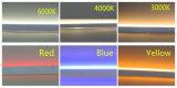 Neon caldo di vendita 9W LED di AC230V 120V