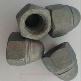 Écrou borgne voûté d'Inox AISI304 d'acier inoxydable