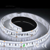 백색 색깔 SMD3014 LED 유연한 지구 빛