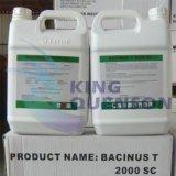 Бацилла Sc короля Quenson Пестицида 7000 Itu/Mg Tc Thuringiensis 600 Itu/UL