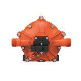 Portable 12V 60 LPC à eau de pression de pompe pour le lavage de véhicule