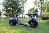 工場製造者は電気安い普及したCitycocoの小型卸売の部品のスクーターを立てる