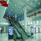 流行の白い耐湿性の装飾的なストリップの天井板