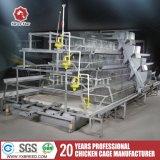 Automatisches Geflügel überlagern Rahmen-Systems-chinesisches Bauernhof-Maschinerie-Geflügel-Ackerbau-Gerät