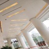 Звукоизоляционные 20 гарантированности потолка лет потолка плитки алюминиевых Perforated/панели пожаробезопасной с ценой по прейскуранту завода-изготовителя ISO9001