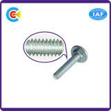 Hex Kontaktbuchse des Edelstahl-M8/Allen-runder/flach Schreibkopfschlitten/quadratische Stutzen-Schrauben