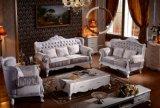 Tessuto classico della mobilia domestica/sofà di cuoio Y1508 stabilito (3 colori)