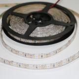 Petite bande d'éclairage LED avec le certificat de la CE
