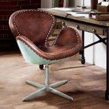 미국 Retro 금속 회귀 여가 백조 의자