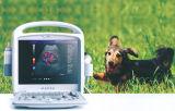 Портативный ветеринарных цветового доплера ультразвуковой системы