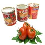 400g la pâte de tomate en conserve des fruits en conserve de coller