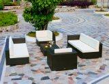 Insiemi del sofà di Drak Brown di combinazione del rattan del PE della mobilia del patio (TG-JW16)