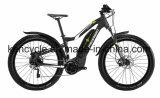Высокое качество электрического велосипеда велосипед с литиевой батареей/ Город E велосипед /E Велосипед (Си-E2706)