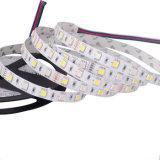 Nuovo indicatore luminoso di striscia di stile 5050 RGBW LED