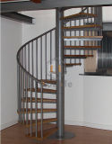 Escaliers spiralés d'intérieur/modèle en bois d'escalier