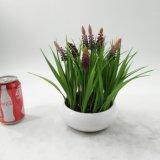 Piante conservate in vaso del Bellflower artificiale della decorazione