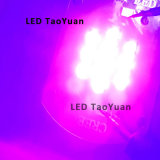 Rayons UV 395nm, 415nm 25W d'éclairages LED