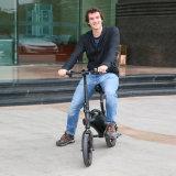 Smartek 12 bicyclette électrique Ebike de montagne de roue du vélo 2 de pouce avec le contrôle 013-1 de $$etAPP