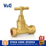 La valvola d'arresto del tubo di acqua della valvola d'arresto (VG-C20102)