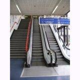 El transporte público por escaleras mecánicas y mover a pie de China