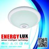 Es-Pl01A Lampe en verre Base en fer Lampe de capteur de plafond