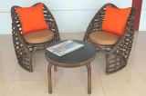 Tabella Furniture-113 esterno del rattan di svago