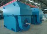 Anillo de deslizamiento de rotor de alta tensión de gran tamaño / mediano tamaño Motor trifásico asíncrono Yrkk4001-6-185kw