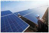 Panneau solaire polycristallin de 250 Watt 1640 * 992 * 40mm pour système solaire