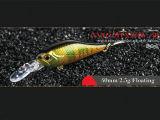 Leurre de pêche en plastique (Nano Minnow 40mm flottante)