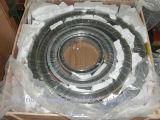 Kohlenstoffstahl-Spirale-Wunddichtung mit CS äußerem Ring