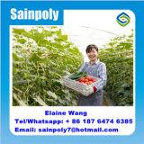 Дом пленки Hydroponics Multispan зеленая аграрная для огурца
