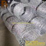 Acier inoxydable en acier galvanisé en acier inoxydable en fer barbelé