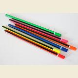Os lápis de néon com revestimento de distribuição, com a extremidade de imersão, Hb de carvão de madeira